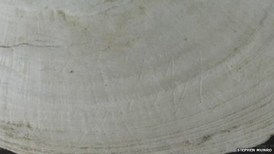 Engravings on shell 430000 year old