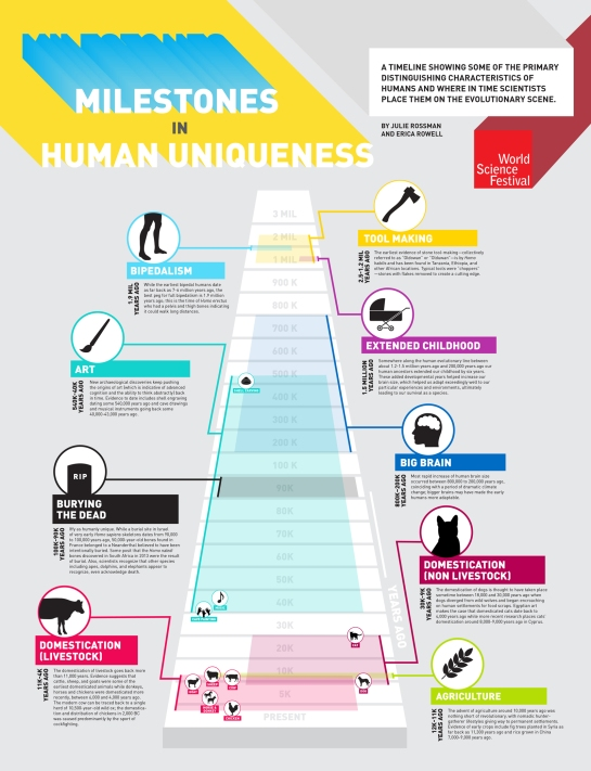 human-uniqueness_infographic