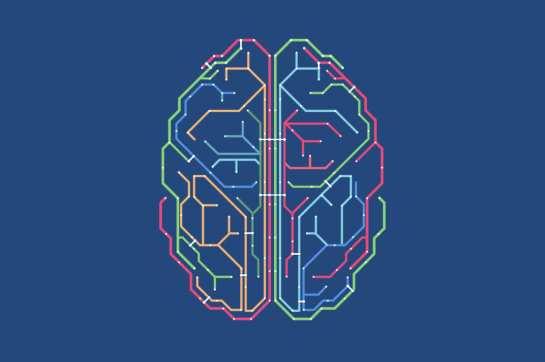 03-brain-map-w536-h357-2x